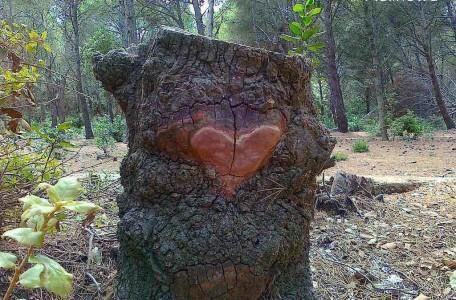 seks jako dowód miłości